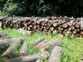Vind lemne de fok   metre  (dispicate) - pret negociabil