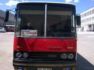 Ikarus 250-93