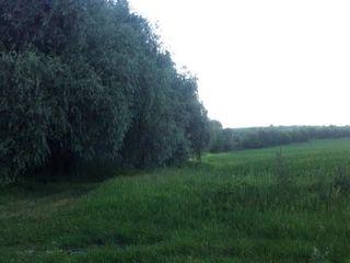 Vind teren constructii nelocative -42 ari linga traseul balcani m21/ proprietar
