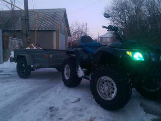 Wolf Motors atv500