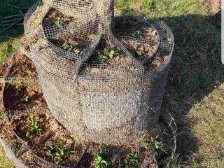 Suport din plasa metalica pentru capsuni sau flori
