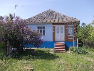 Casa in satul Cosauti