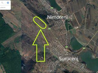 Loturi agricole extravilane, prima și a doua linie, sat. Suruceni