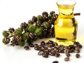 Касторовое масло Индийское. 180 лей