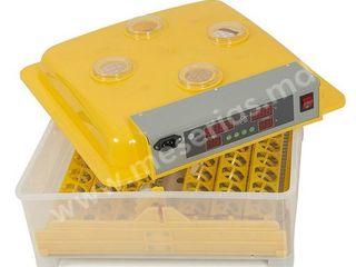 Incubator 48 ouă automat ASEL WQ-48/Инкубатор 48 яиц автоматический/Livrare/Garantie
