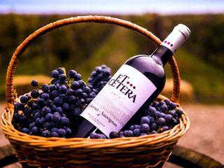 Card cadou pentru excursie – «De vorba cu vinicultorul»