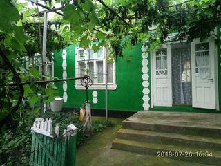 Продается дом с хозяйством в деревне, земля возле дома