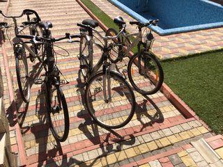 Biciclete de la 1000 lei