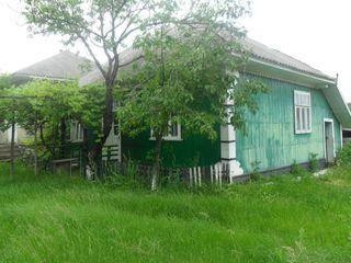 "BC ""ProCredit Bank"" SA vinde casa in r-nul Edinet, sat. Rotunda"
