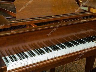 Мастер высокой квалификации по настройке фортепиано и роялей.