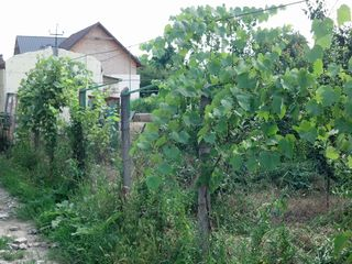 Teren pentru constructie in suburbia or. Chisinau