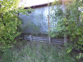 Дачный участок. 25 км от Кишинева и 5 км от Ваду-луй-вод