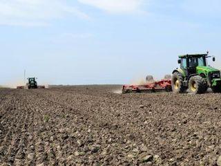 Oi / pământ arabil