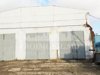 Spre vânzare, industrial — str. socoleni, 1080 m2, 235000 €