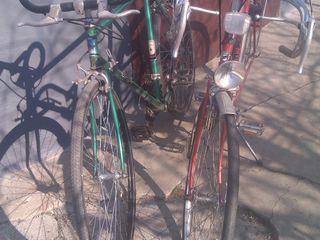 biciklete sport