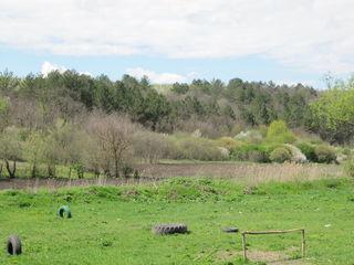 Продаем под развитие бизнеса ,базы отдыха или...,проект с 95 сотками между лесом и прудом