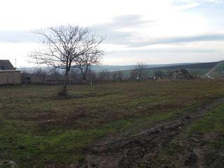Loc de casa satul Bilicenii Vechi