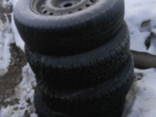 250 лей 1 колесо