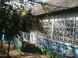 Se vinde casa la Molovata veche