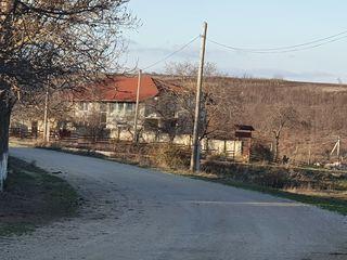 Teren Holercani lîngă pădure si nistru