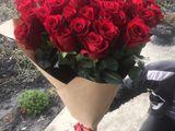 Trandafiri olandezi la Pret Unic