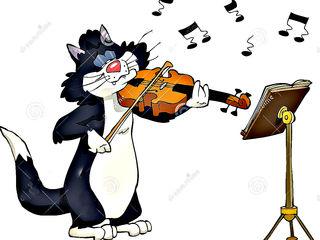 Aş cumpara vioara. Скрипку куплю