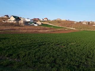 Участок под строительство 5 км от Кишинева