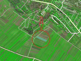 Truseni, teren agricol, 71 sote, 22000euro!