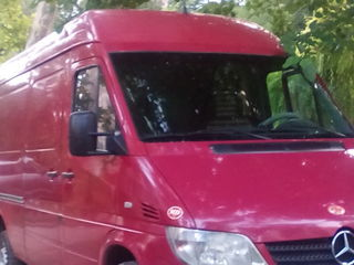 Gruzo taxi....bus taxi...transport marfar