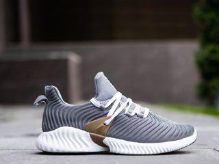 Adidas Alphabounce Instinkt Grey