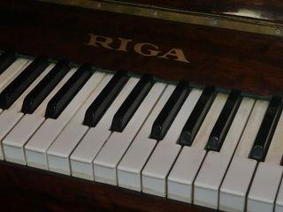 Vand fortepiano Riga