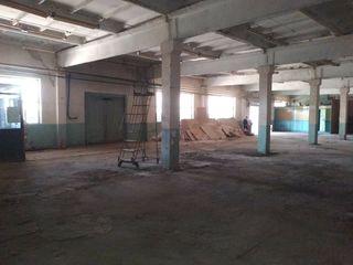 Сдаются производственно-складские помещения, 100, 300, 650м2