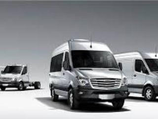 Busuri pentru transportarea marfurilor dumneavoastra.Hamali