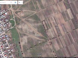Vind teren agricol(gradina cu vita de vie)