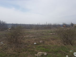 Vînzare teren agricol, or. Cricova, 6 ari la 5000€