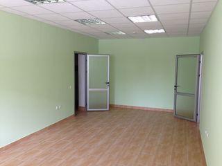 Arenda  72 m2 , spatiu  nelocativ , la  Buiucani - str. Alba  Iulia ...