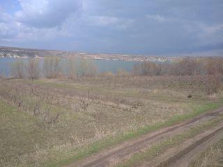 Teren agricol pe malul râului Nistru