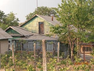 Продаю дом, в селе Пырлица. Участок 32 сотки. 6500 евро.Торг.