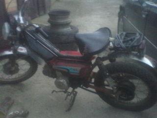 Harley - Davidson sport