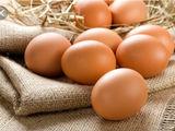 Куплю яйца