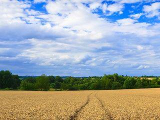 Продам земли аграрного назначения в окружения села Колоница