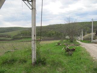 66 соток аграрной земли на первой линии от трассы, 2 км от г. Хынчешты ,отлично под развитие бизнеса