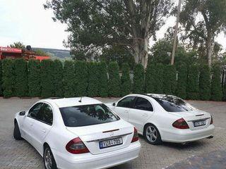 rentmercedes.md - Mercedes E Class W211 albe/negre (белые/черные) - 10 €/ora (час) & 65 €/zi (день)