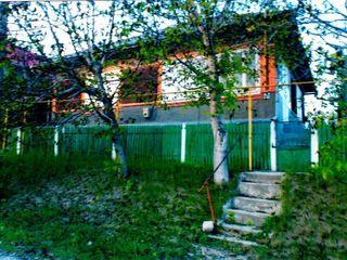 Срочно дом в Липканах  Центр