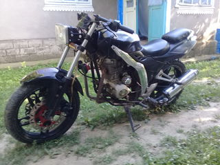 Harley - Davidson Blazer