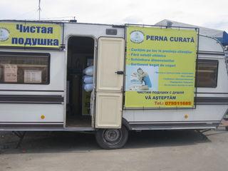 New!!! curăţătoria perna curată înlătură complect praful !!!   new!!! чистая подушка – полное обеспы