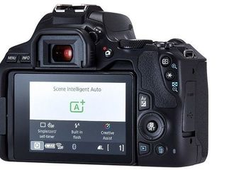 Зеркальный фотоаппарат Canon EOS 250D + EF-S 18-55mm f/3.5-5.6 III
