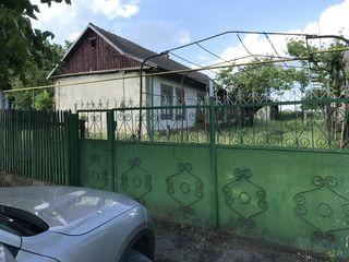 Каушанский Район Григорьевка