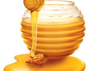 Cumpar miere salcim angro | cel mai bun pret