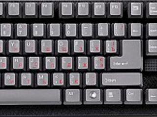 Tastaturi la preturi bune! De la 200 lei!